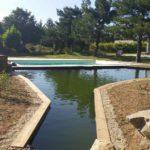 bassin paysagiste terrasse piscine 44