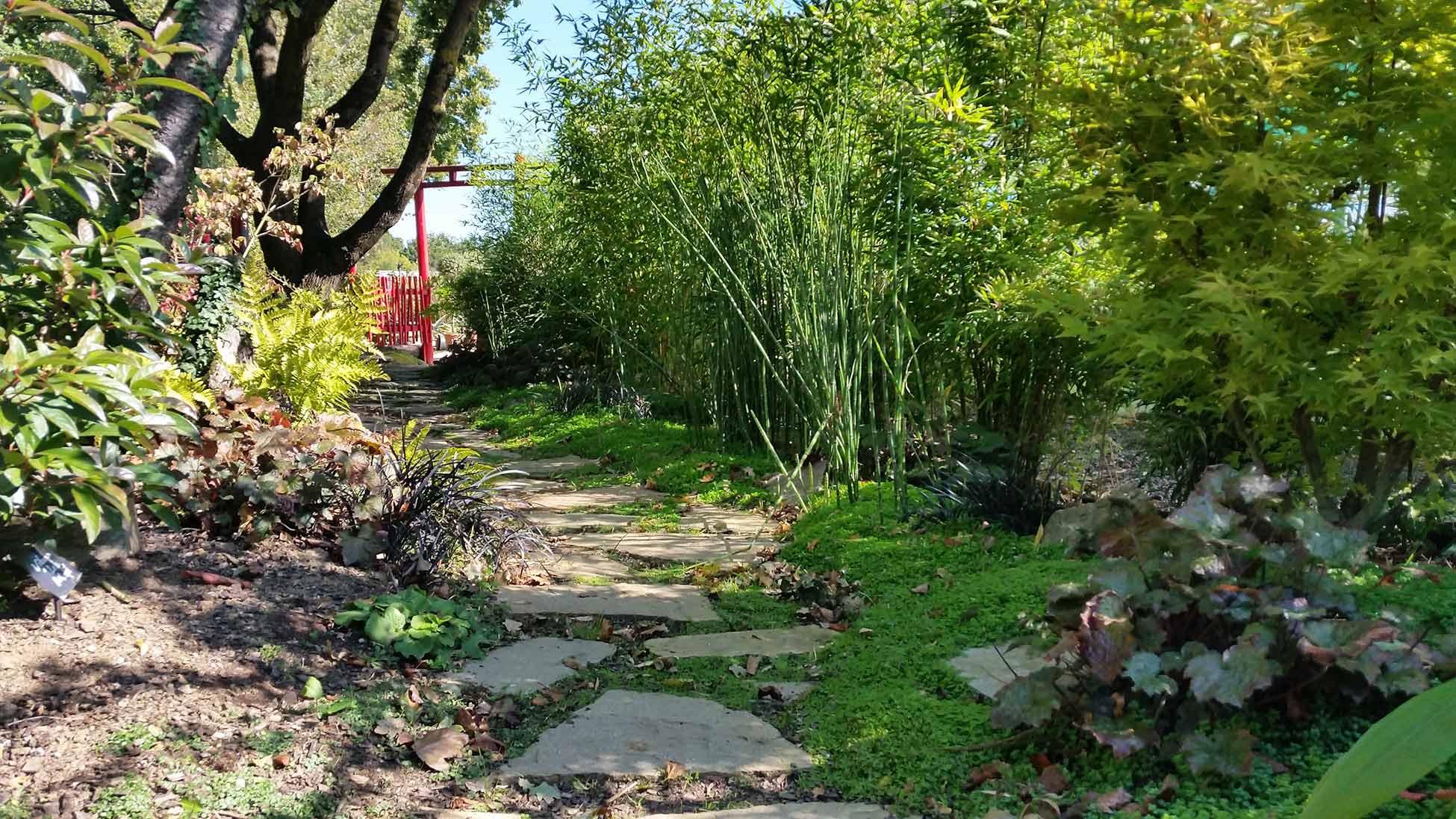 Paysage jardin potager en carr jardin carr ou en for Paysage jardin