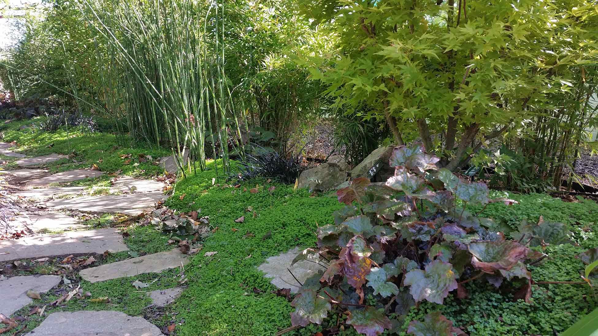 Showroom barreau paysage st mars de coutais jardin for Paysage de jardin