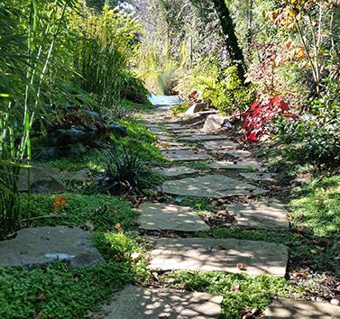 jardin japonais saint mars de coutais après - jardin nantes 44